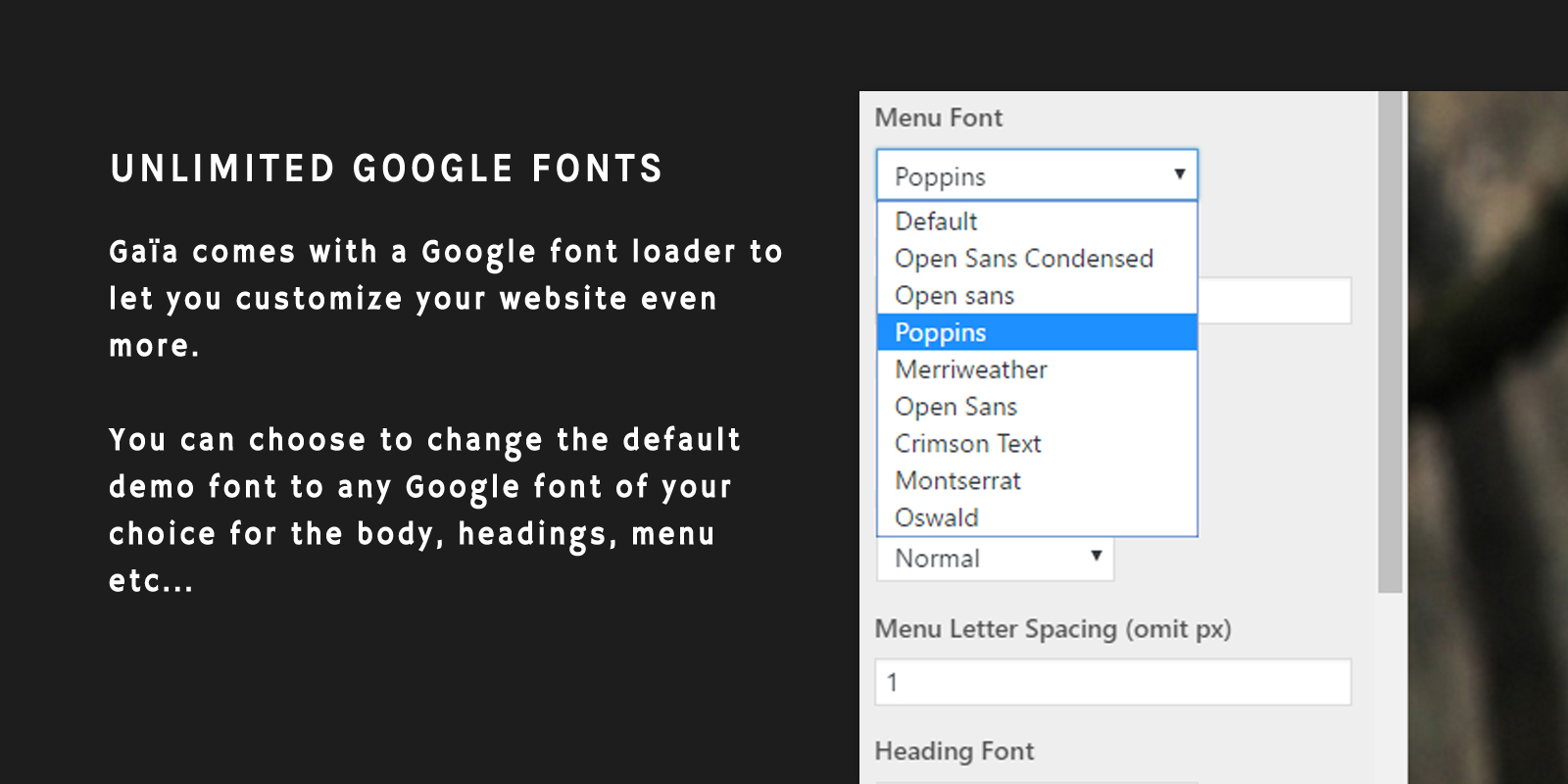 Unlimited Google Fonts