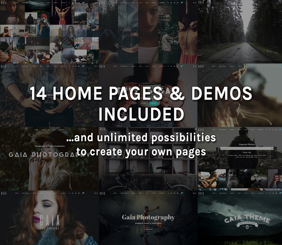 14 Home Pages and Demos Included