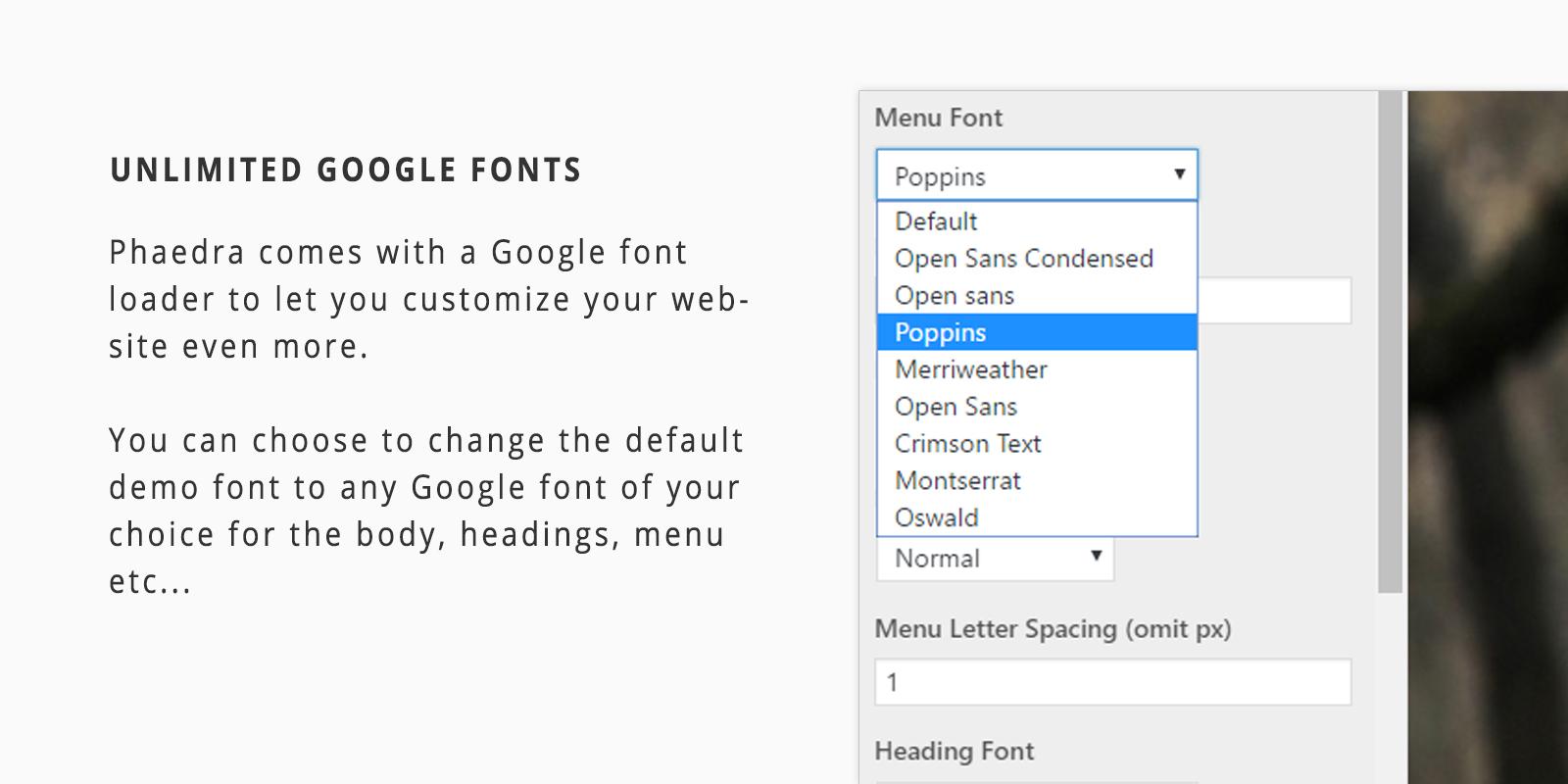 Google Fonts Loader