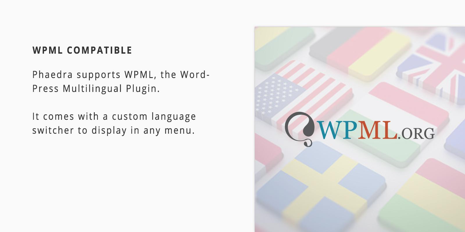 WPML Supports